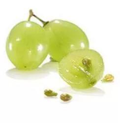 szőlőmag szőlőmagolaj
