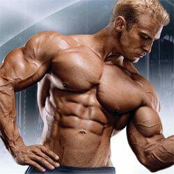 Testépítés, étrend, edzés