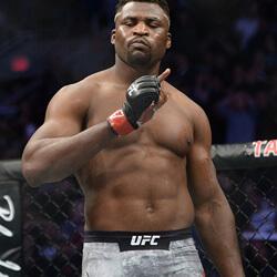 Francis Ngannou UFC harcos