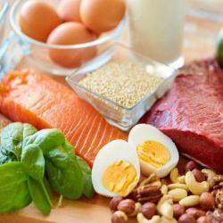 Magas fehérjetartalmú ételek
